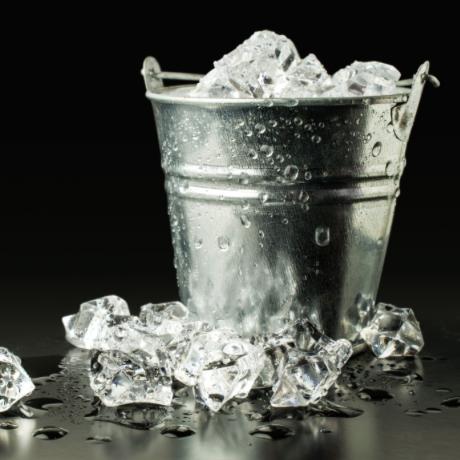 Agap forniture categorie prodotto cestelli ghiaccio - Cestelli porta ghiaccio ...